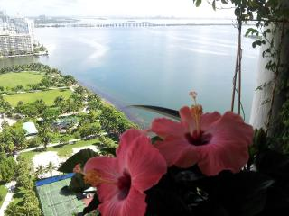 Downtown luxury Apt. Amazing water view !!!! - Miami vacation rentals