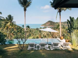 Gorgeous 4 bedroom Villa in Koh Phangan - Koh Phangan vacation rentals