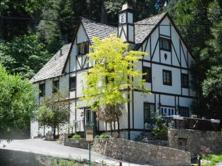 Bracken Fern Manor - Lake Arrowhead vacation rentals