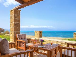 Luxury villa Pearl  with pool by the sea - Nopigia vacation rentals