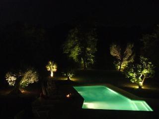 BERGERIE + GRANGES 27 PERSONNES PISCINE SUD LANDES - Soustons vacation rentals