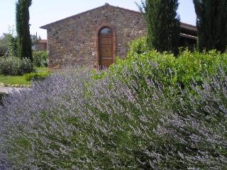 Antico Convento di Montepozzali  Teresa - Massa Marittima vacation rentals