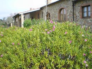 Antico Convento di Montepozzali Carlotta - Massa Marittima vacation rentals