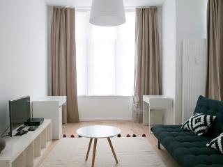 Stassart - 3300 - Brussels - Ixelles vacation rentals