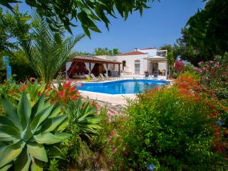 Vacation Rental in Paphos