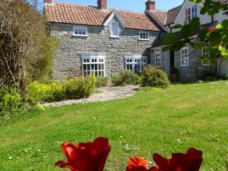 Bartonstone House - Glastonbury vacation rentals