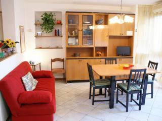 Appartamento a Lido di Camaiore 100 m dal mare - Lido Di Camaiore vacation rentals