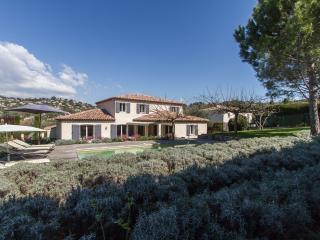Beautiful villa between Cannes and Mougins - Mougins vacation rentals