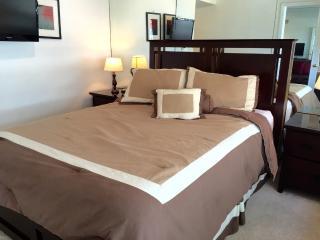 Alexander Resort Private Condo suite 616 - Miami Beach vacation rentals