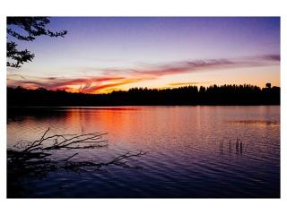 Shandelee Lake Inn - Livingston Manor vacation rentals