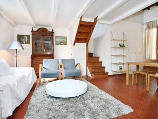Leone apartment in San Frediano - Florence vacation rentals