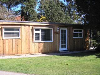 Beautiful Chalet with Internet Access and Television - Aberdovey / Aberdyfi vacation rentals
