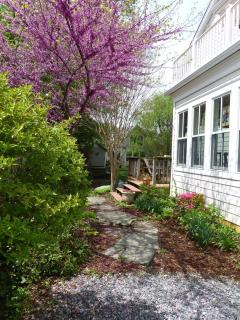 Charming Artists Home in Eastport/Annapolis - Annapolis vacation rentals