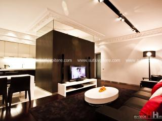 Two-roomed VIP apart  forbyday rent on Nevskiy 137 - Russia vacation rentals