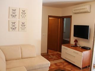 Aparment Novalja - Novalja vacation rentals