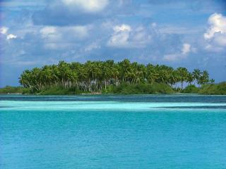 Rasreef & Scuba Maldives Rasdhoo - Rasdhoo vacation rentals