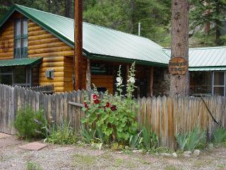 2 bedroom Cabin with Internet Access in Allenspark - Allenspark vacation rentals