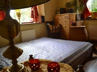 Cozy room close to the Hill of Crosses - Siauliai vacation rentals