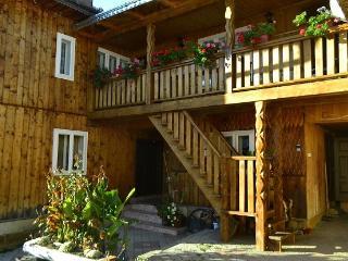 Pensiunea agroturistică Casa Colinita - Vatra Moldovitei vacation rentals
