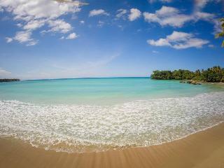 Playa Bonita Beach PENTHOUSE on the Bay! - Las Terrenas vacation rentals