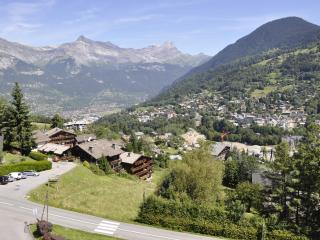 Nice Condo with Parking Space and Television - Saint Gervais les Bains vacation rentals