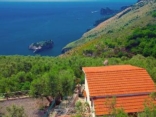 The Lizard - Massa Lubrense vacation rentals