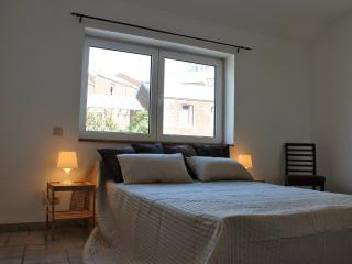 1 bedroom Condo with Internet Access in Liege - Liege vacation rentals