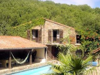 Moulieres French holiday home with pool, sleeps 10 - St Gervais sur Mare vacation rentals