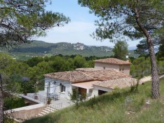 Villa in Provence sleeps 12 July/August 2015 pool - Rognes vacation rentals