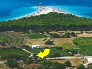 vineyard villa with pool - Bol vacation rentals