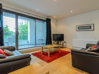 Apt with parking, WIFI, GYM close to City Centre - Belfast vacation rentals
