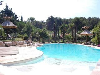 Provencal Villa with Pool Environment Pinewood - Chateaurenard vacation rentals