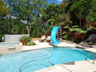 Gardens Ocean View Heated Pool Mountain Villa - Canovanas vacation rentals