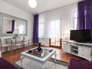 LUX Apartment @TAKSIM istanbul - Istanbul vacation rentals