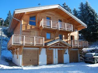 Lovely Chalet with Internet Access and Television - Chamrousse vacation rentals