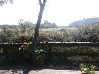 Appartamento con terraza e giardino a due passi - Ansedonia vacation rentals