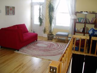 Charming apartment in Montreal, next to all comodities (and cup rogers) - Montreal vacation rentals