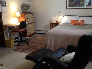 Room with double bed minutes from Harvard Square - Arlington vacation rentals