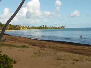 Palmas del Mar-Beautiful Ocean and Golf Views! - Punta Santiago vacation rentals