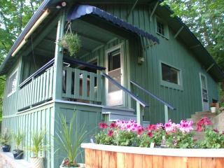 Cozy 2 bedroom Cottage in Shawnigan Lake - Shawnigan Lake vacation rentals
