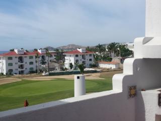 Gorgeous 2 bedroom Condo in San Jose Del Cabo - San Jose Del Cabo vacation rentals