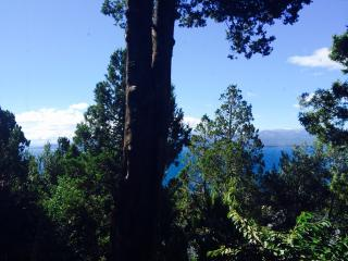 Beautiful One Bedroom Apartment With Lake Views - San Carlos de Bariloche vacation rentals