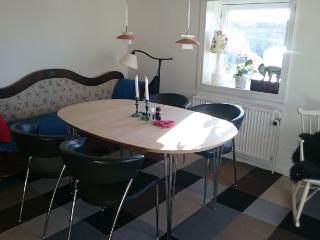 Spacious Copenhagen apartment near nice parks - Copenhagen vacation rentals