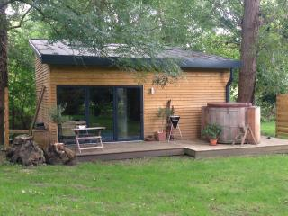 Romantic 1 bedroom Maidstone Cabin with Internet Access - Maidstone vacation rentals