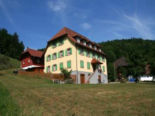 Vacation Apartment in Schuttertal - 861 sqft, 2 bedrooms, max. 4 people (# 6069) - Schuttertal vacation rentals