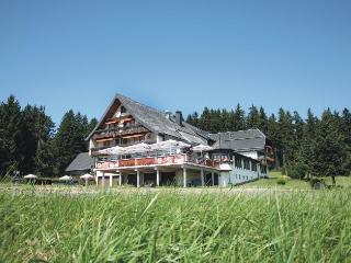 Guest Room in Schönwald -  (# 6088) - Furtwangen vacation rentals