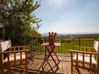 Country Farmhouse Le Due Volpi, Tuscany - Vicchio vacation rentals