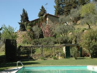 Villa Nicomedia  for 6 people with private pool. - Lucca vacation rentals