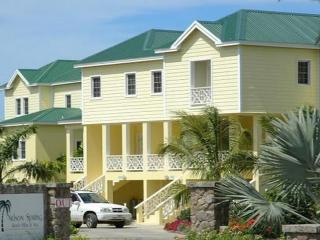 Nelson Spring - Nevis vacation rentals