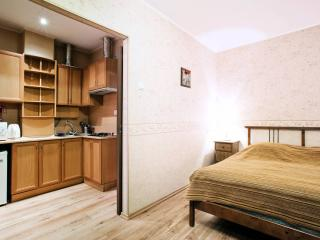 uliza Gorohovaya 33A - cozy Studio - Saint Petersburg vacation rentals